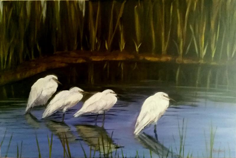 """Snowy Egrets"" (Pond at Martha's Vineyard)"